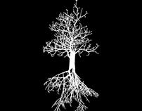 Páramo - Logo / Flyers