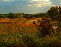 Chain of Lakes, Illinois