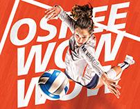2016-17 Illini Volleyball Creative