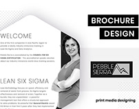 Brochure Design For Pebble Sierra - Lean Six Sigma