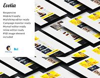 Evolia Email E-commerce Newsletter
