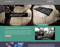 Web Design & Development for Amvian