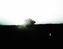Dark Silver Landscape
