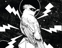 BIRD'S GEOMETRY