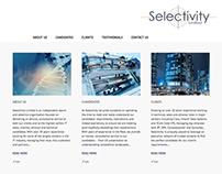 Consultancy Website