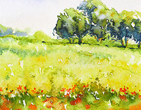 Watercolors painting / Acquerelli / Акварель 2013