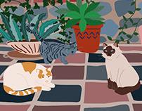 Cats and Plants - Digital Illustration