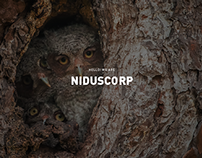 NIDUSCORP - Web Site