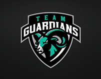 Team Guardians