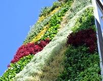 Los beneficios obtenidos de las jardineras verticales