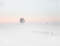 White sunset.