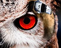 IMAGE MANIPULATION - OWL DRIFT CON