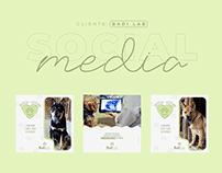 Social Media | BadiLab