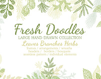 Hand drawn Leaves Branches & Herbs Fresh Doodle collect