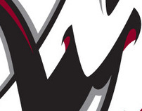 Colorado Mammoth Team Identity