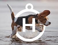Harley & Co | Dog Treats