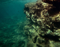 freeing from the earth 'underwater'