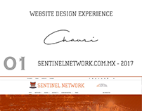 Chauri: Website Design Experience