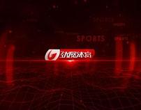 G Sports ID 2012