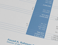 BSE Annual Report (2007)
