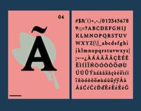 Acelga Font