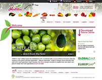 Galilee Export - Web site