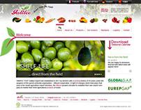Galilee Export - Web site