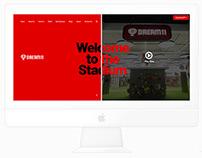 Dream 11 - Corporate Website Design & Concept