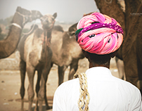 Pushkar Fair 2015