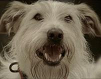 "Cepsa - ""Doggie"""
