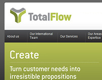 TotalFlow - Brand & Website