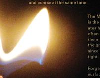 Narrative Studies for Michael Martone's book