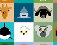 Animal portaits