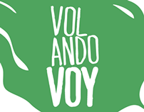 Volandovoy. Identidad visual corporativa