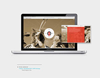 Oahas - Web Design