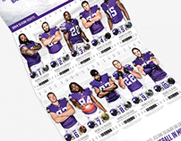 2014 Minnesota Vikings Season Tickets