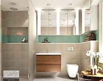 Bathroom/Property renovation Concept&Design