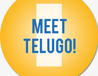 Telugo Website Redesign