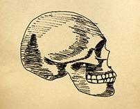 """Ilustraciones """"Anatomia Humana"""""""