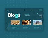 Bloggers UI concept