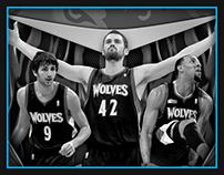 Minnesota Timberwolves (2012)