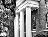 Favorite Campus spot