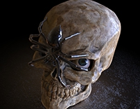 Skull and Spider