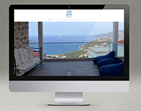 Mavi Manzara brand and website build