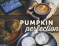 Pumpkin Perfection | Specialty's Café & Bakery