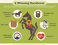 Racehorse Infographic