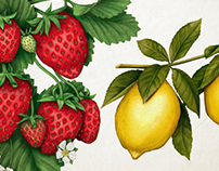 Illustrations for Tine 14 Kesam Kvarg