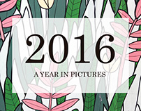 2016 A Year in Pictures