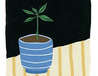 Houseplants - Personal Illustration