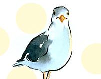 Seagull Lovers' Prattle